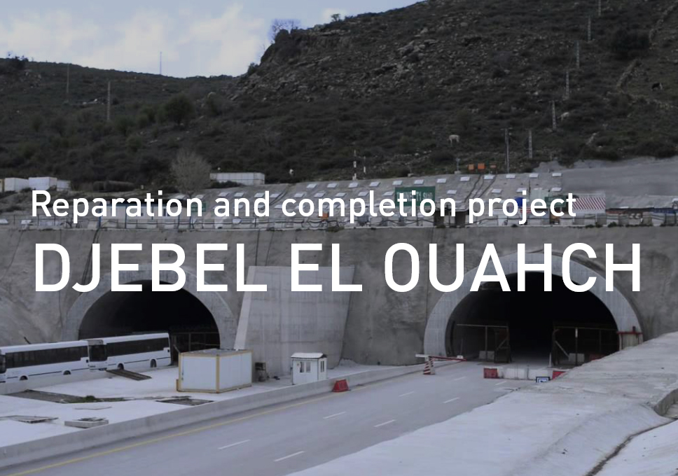 Reparation and completion project in Djebel El Ouahch, Algeria